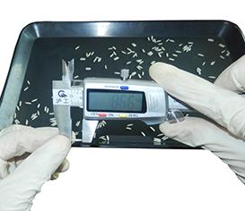 Vernier Calipers for grain measurement